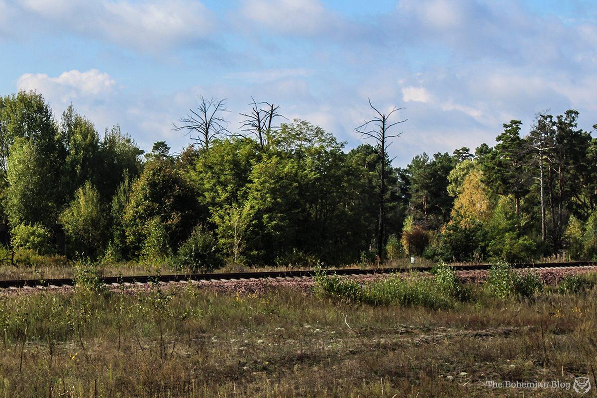 Chernobyl Tourism 17-DR