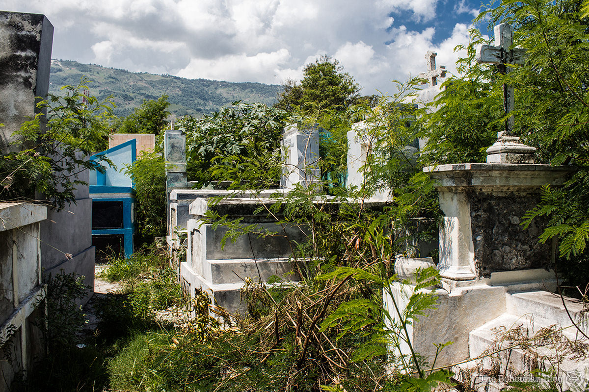 The wild, overgrown corners of Le Grand Cimetière. Port-au-Prince, Haiti.