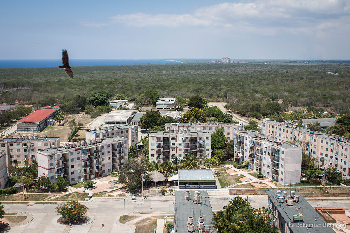 A Cuban turkey vulture circles over the quiet streets of Ciudad Nuclear.