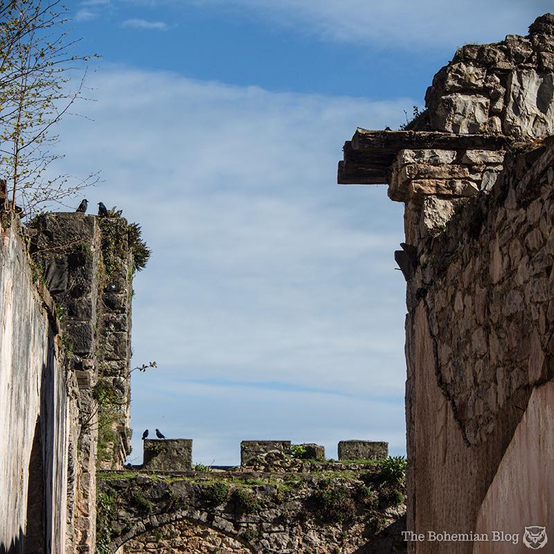 Gwrych Castle 13