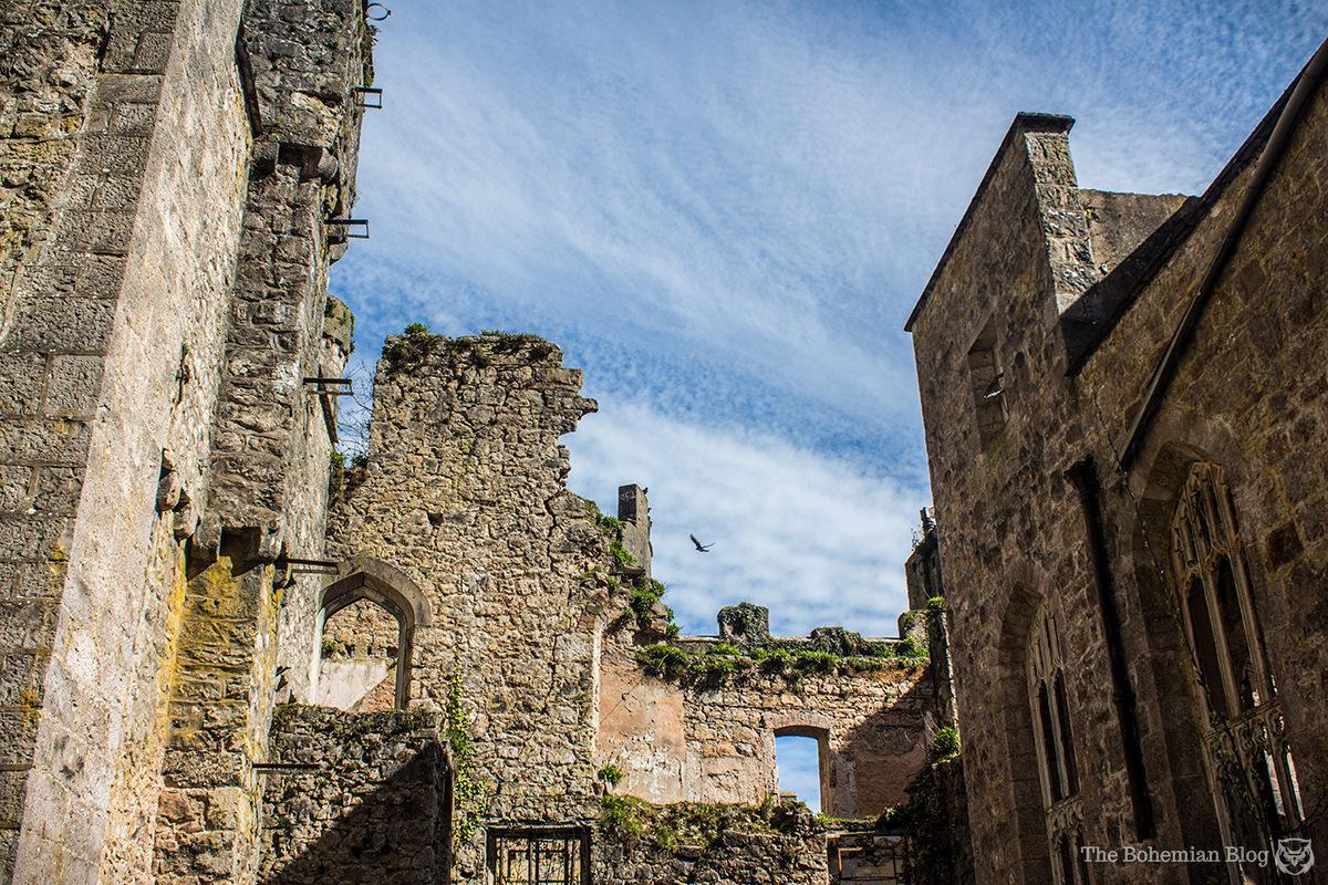 Gwrych Castle 24