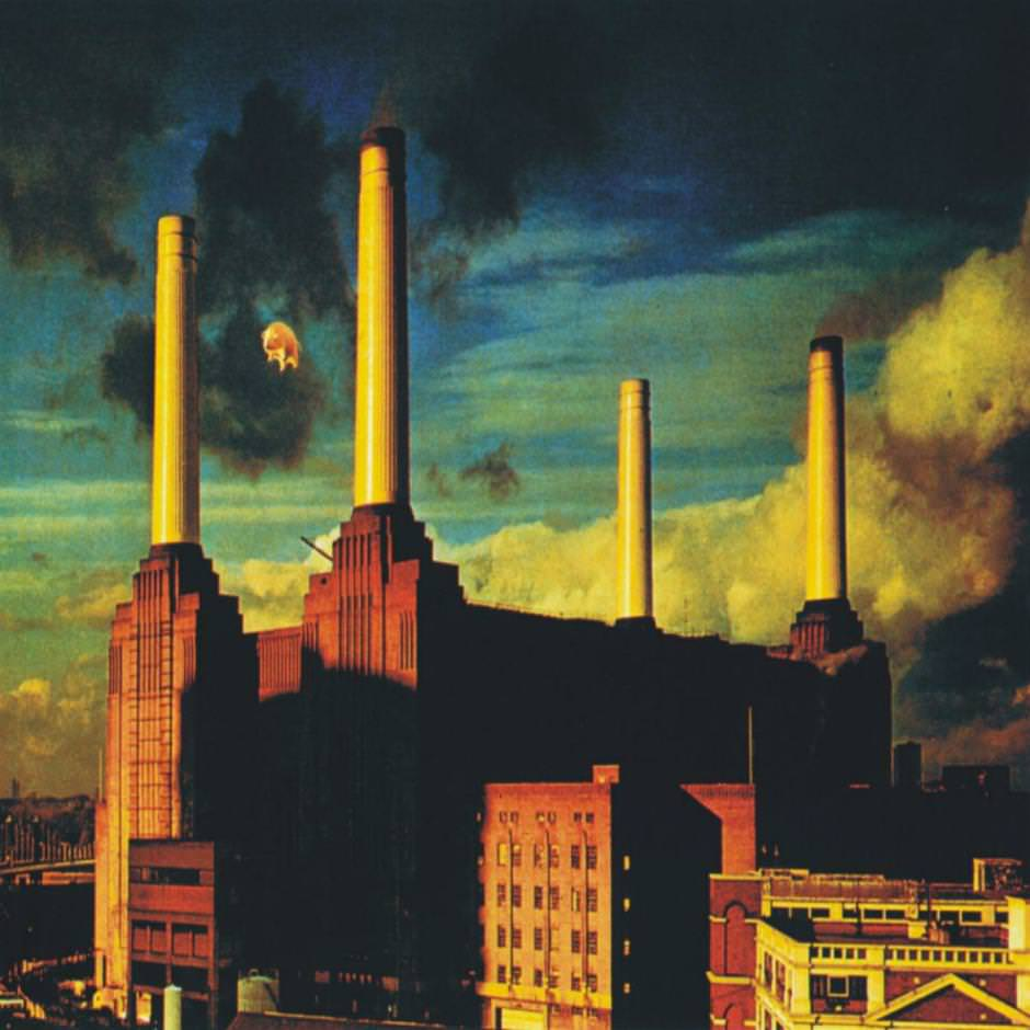Battersea-Animals