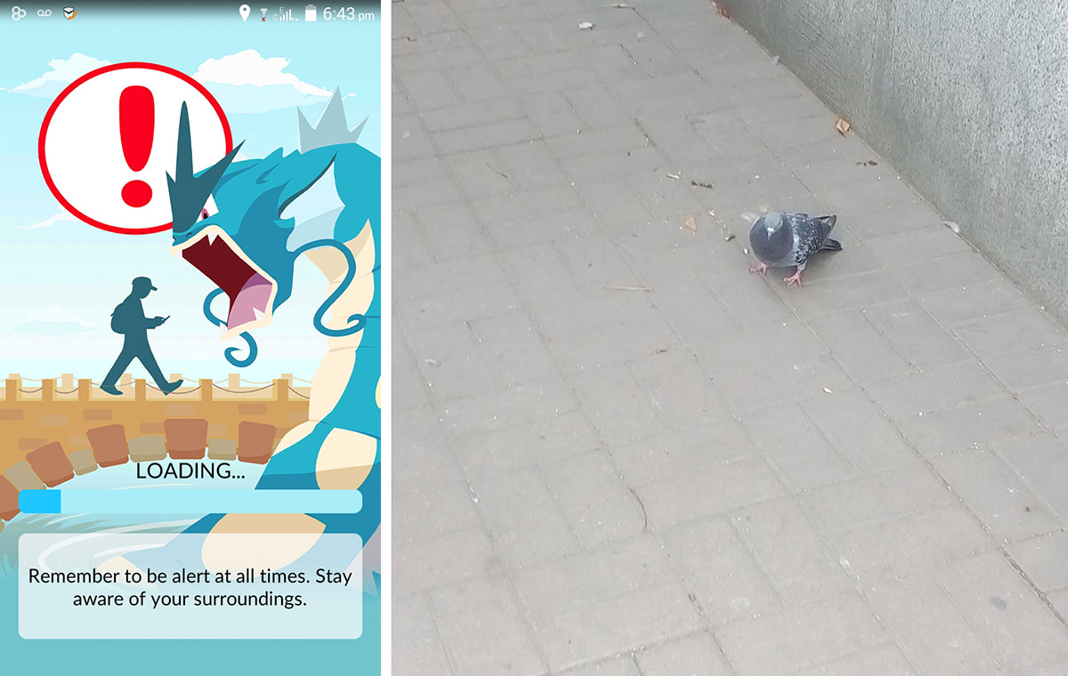 """1: Much like psychogeography, Pokémon Go urges, """"Stay aware of your surroundings."""" 2: I tried catching this one, but it flew away."""
