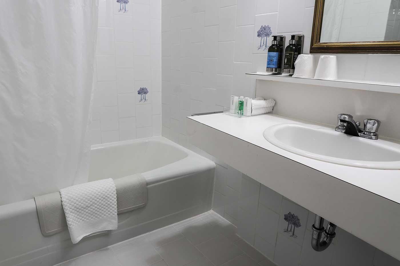 Bathroom in Room 202. Fort Garry Hotel, Winnipeg. Canada.