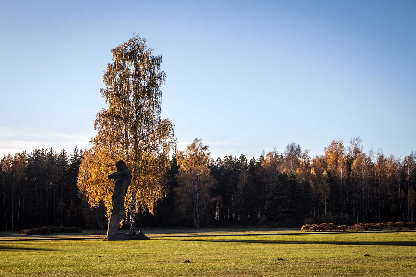 'The Humiliated' is partially hidden now, behind a tree not part of the original design for the memorial. Salaspils Memorial, Latvia.