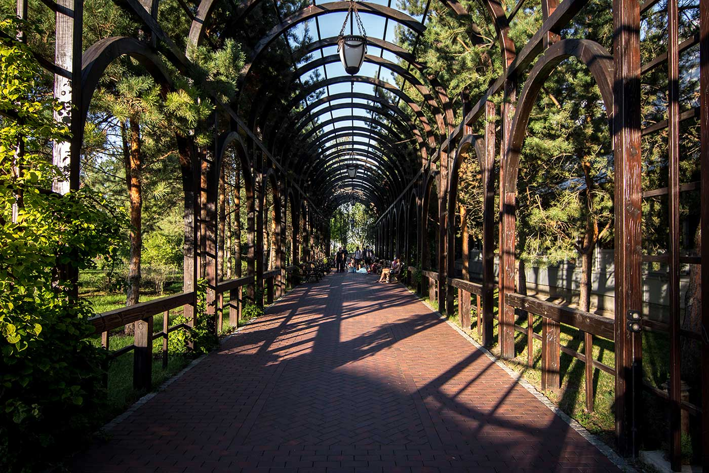 A shaded promenade behind Yanukovych's private wellness complex. Mezhyhirya, Ukraine.