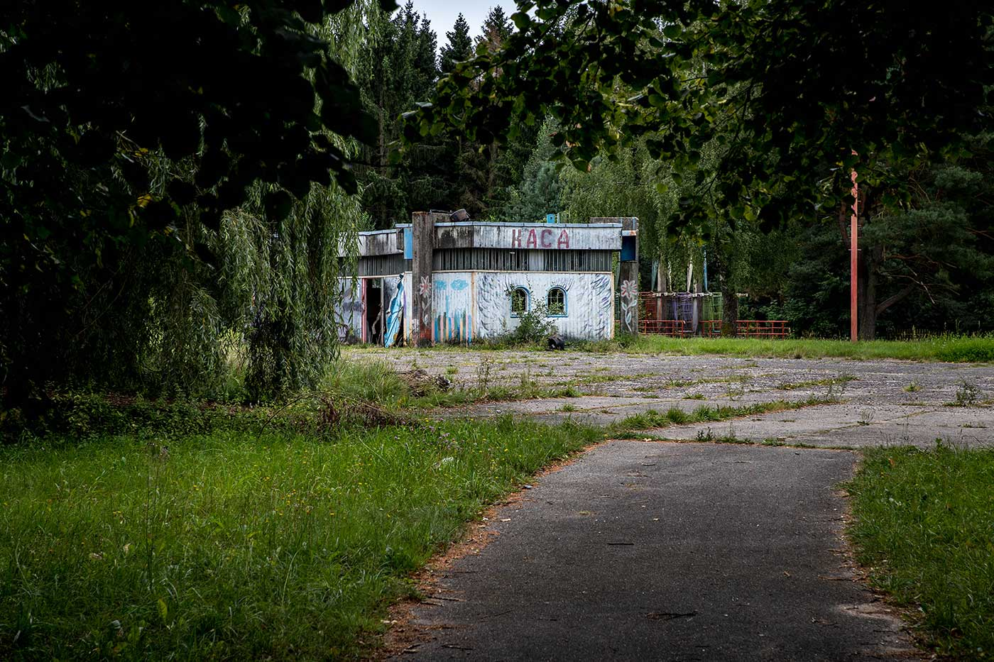 The overgrown path to the 'Children's World' amusement park in Elektrėnai, Lithuania.
