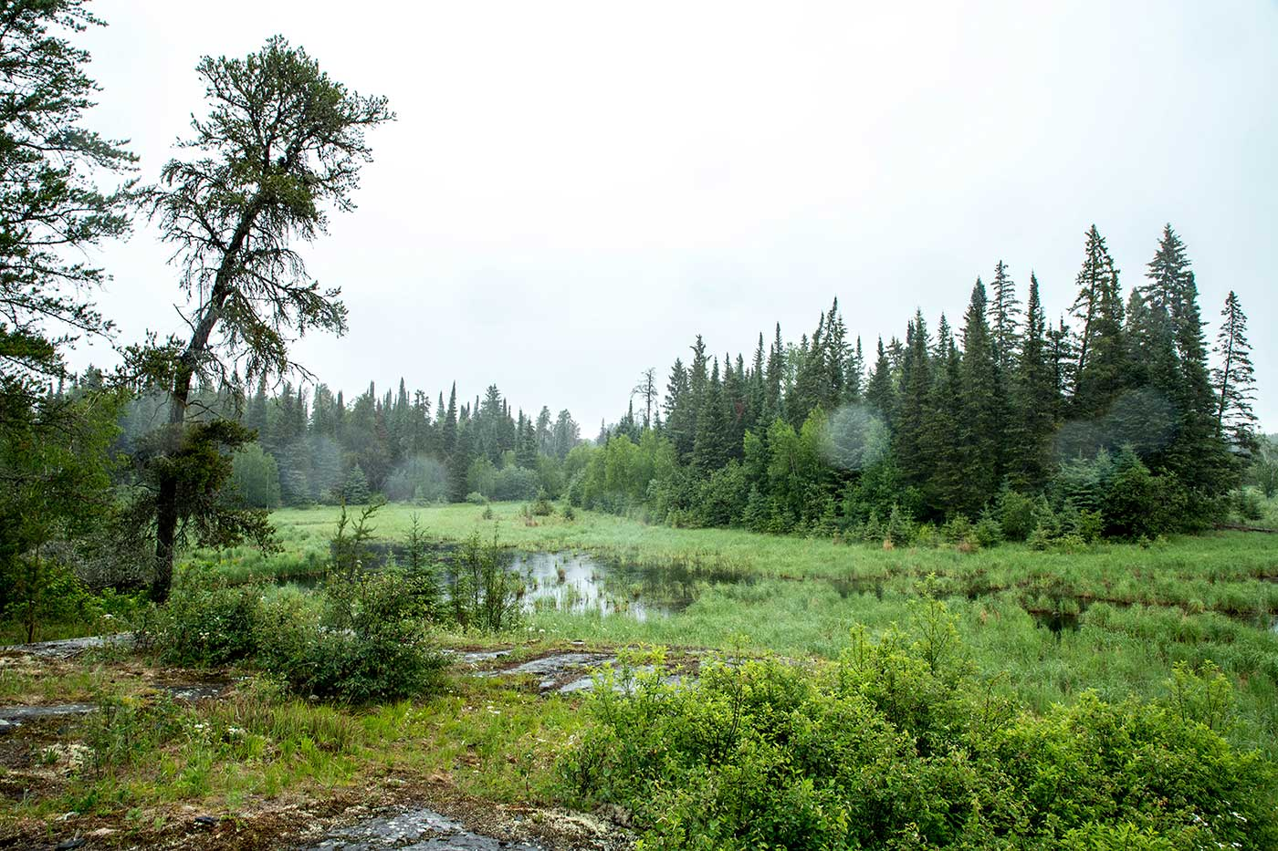 This clearing in Whiteshell Forest, a couple of miles north of Falcon Lake in Manitoba, is where Stefan Michalak reported having his 1967 encounter with a grounded extraterrestrial craft.